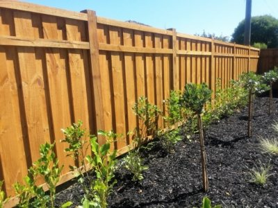 1800h custom timber pailing fence